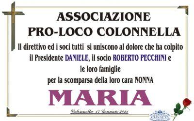Partecipazione Pro-Loco Colonnella